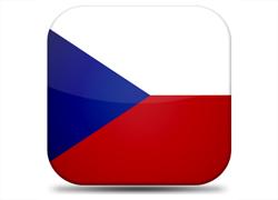 cseh fordítás, szakfordítás